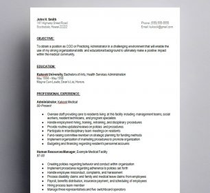 professional and simple cv template