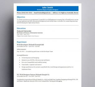 blue and white themed resume for professionals