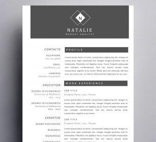 classy and elegant resume design