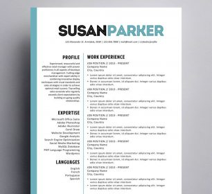 clean and fashionable resume template