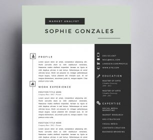 modern and professional resume example