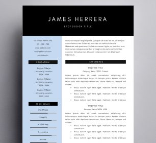 modern business resume